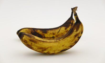 Zu gut für die Tonne: Wie Sie der Lebensmittelverschwendung den Kampf ansagen