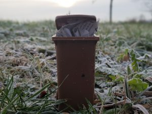 Festfrieren des Abfalls in der Biotonne