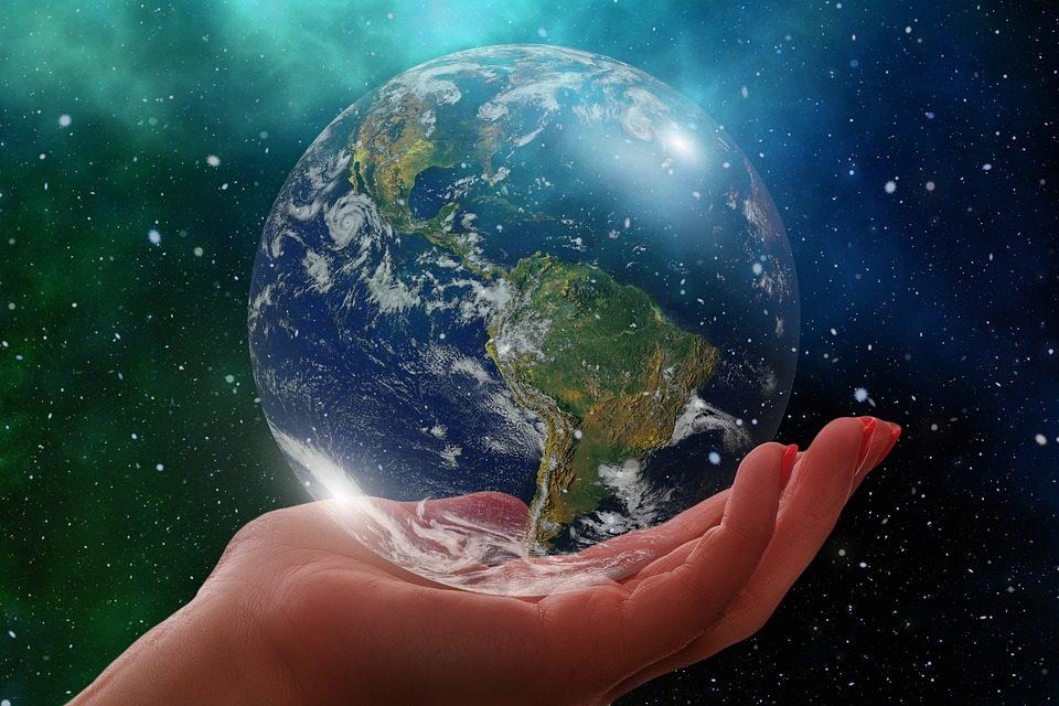 Die Umwelt zu schonen ist gar nicht so schwierig – In diesen vier Bereichen können auch Sie die Umwelt schützen