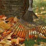 Den Garten winterfest machen im Herbst – 5 Tipps, wie Sie Ihre Gartenabfälle korrekt entsorgen